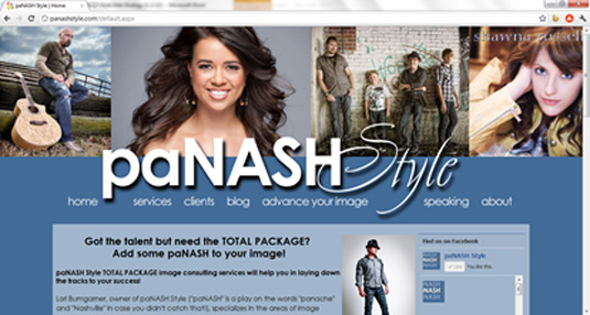 paNASH Style website after