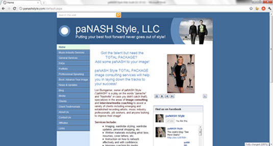 paNASH Style Website before